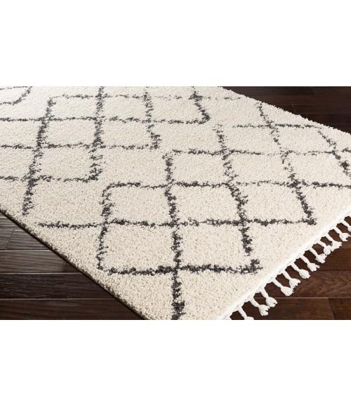 Surya Berber Shag BBE-2300-2x3 rug