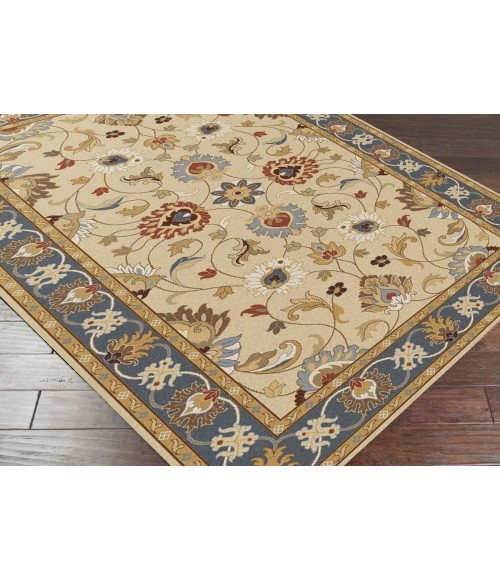 Surya Caesar CAE-1125-4x6 rug