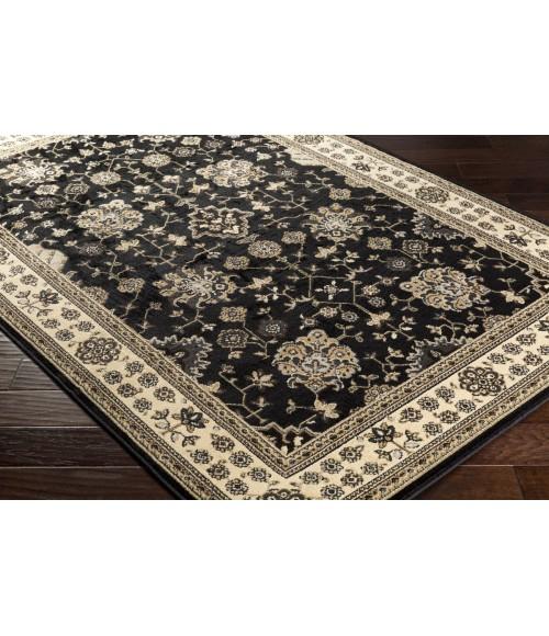 Surya Paramount PAR-1070-2x3 rug