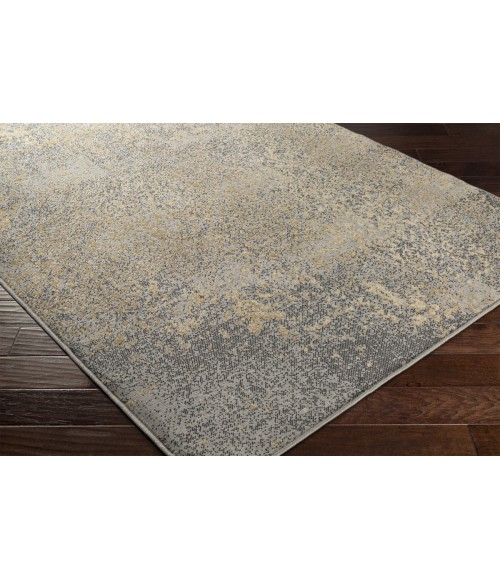 Surya Paramount PAR-1074-53x76 rug