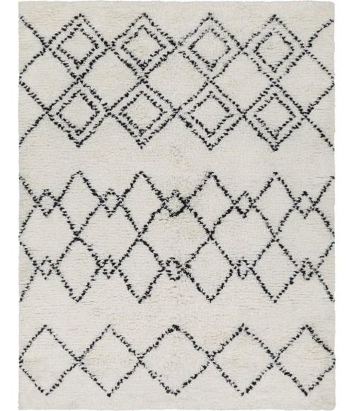 Surya Sherpa SHP-8002-2x3 rug